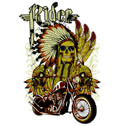 indian rider vector image