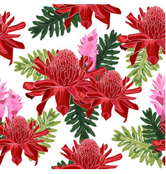Red torch ginger seamless pattern with tropical vector