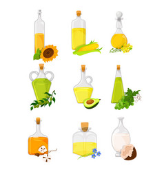 Vegetable oil set different kinds of edible vector
