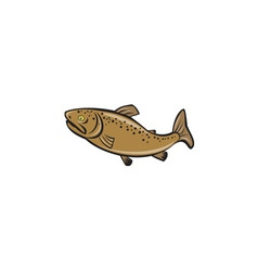 Brown Trout Fish Side Cartoon vector image vector image