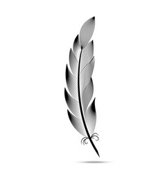 black and white contour feather engraving vector image vector image