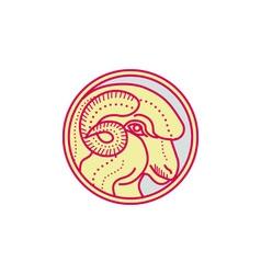Merino Ram Sheep Head Circle Mono Line vector image vector image