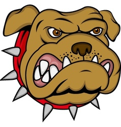bulldog cartoon vector image