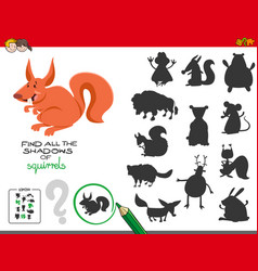 educational shadows game with squirrels vector image