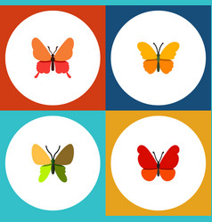 Flat monarch set of butterfly beauty fly danaus vector
