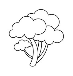 Healthy vegetable broccoli vector