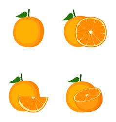 Orange whole fruit slice vector