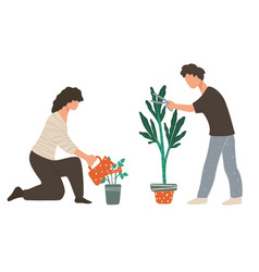 people caring for plants watering and cutting vector image