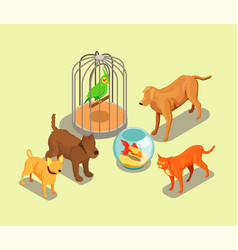 Pet shop isometric background vector