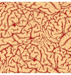 seamless brain convolutions vector image
