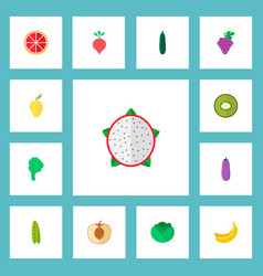 set of berry icons flat style symbols with kiwi vector image