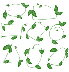 Set of ecological leaf shapes on white background vector