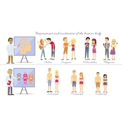 Set temperament of people and constitution body vector