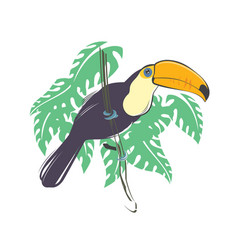 toucan bird sitting on branch vector image
