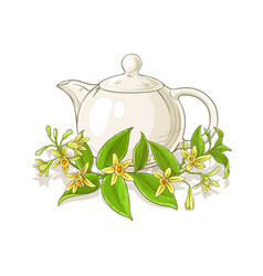 Vanilla tea vector