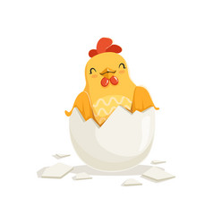 cute cartoon rooster with broken chicken egg shell vector image