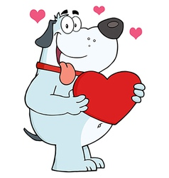 Gray fat dog holding up a red heart vector
