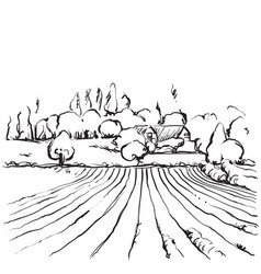 hand drawn of a fields vector image