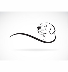 a dog headlabrador retriever on white background vector image