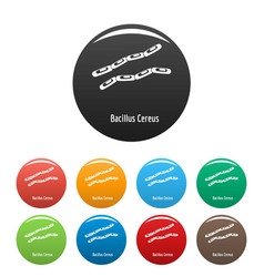 Bacillus cereus icons set color vector
