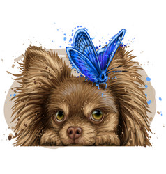 Chihuahua dog with a butterfly wall sticker vector
