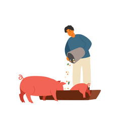 Farmer rancher man feeding pig with vegetables vector