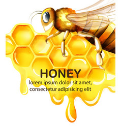 Honey watercolor set with honeycomb and big bee vector