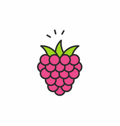 raspberries icon vector image