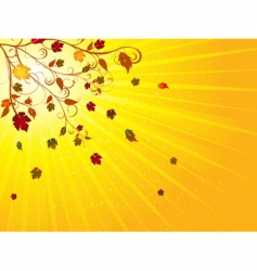 autumn tree and leaves vector image vector image