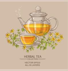 tutsan tea vector image vector image