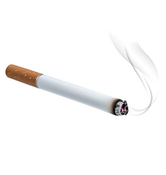 Burning cigarette vector image vector image