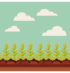 fresh farm design vector image