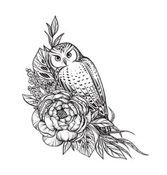 Black and white owl peony vector