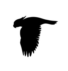 black silhouette flying cockatoo parrot vector image