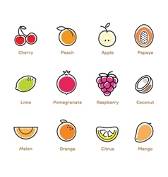 Fruits and berries color icons vector image