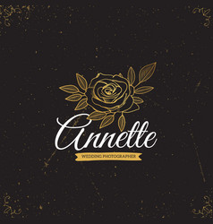 gold logo template vector image