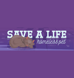 save life homeless pet poster with sleeping cat vector image