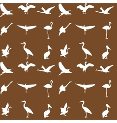 Set of different photographs of birds seamless vector