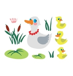Set of mother duck with three baby ducks vector image