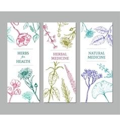 Sketch Herbal Vertical Banners vector
