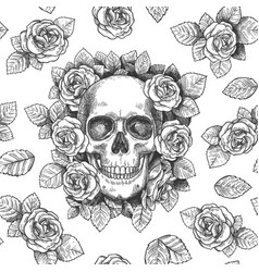skull with flowers sketch skulls with roses vector image