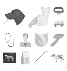 veterinary clinic monochrome icons in set vector image