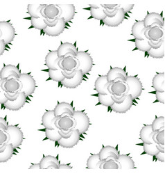 white roses seamless pattern background vector image