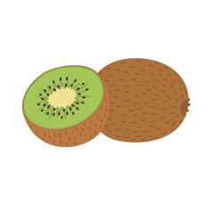 whole and half kiwi vector image