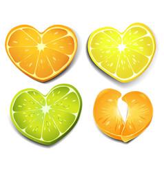 citrus heart shape vector image vector image
