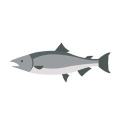 Flat fish icon logo isolated on white background vector image