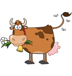 Brown Dairy Cow With Flower In Mouth vector image
