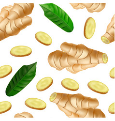 realistic detailed 3d whole ginger root and slices vector image