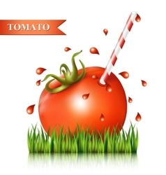 Red fresh tomato on the grass fragment vector