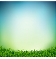 landscape with green grass vector image